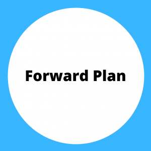 Click for Museum Forward Plan in a PDF format