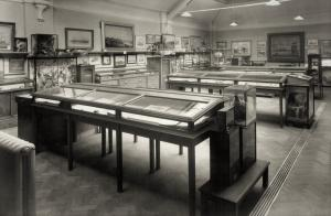 A black and white photograph showing glass and wood museum cases with artwork, archaeology and taxidermy on display